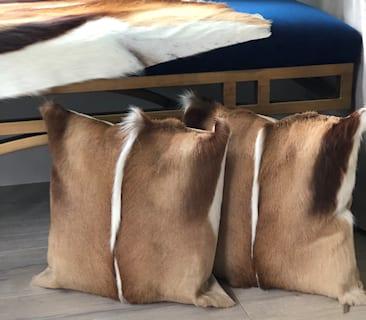 Springbok Hides & Cushions