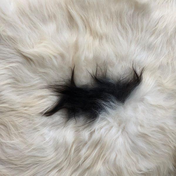 icelandic-sheepskin-black-spot