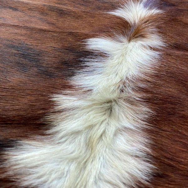 cow-skin-rug-A104