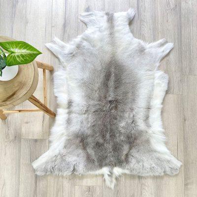 reindeer skin 13