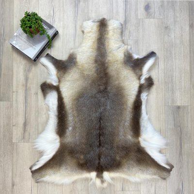 reindeer hide 21