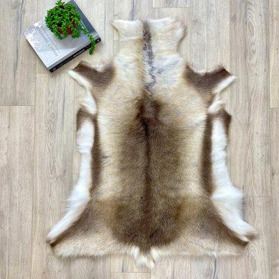 reindeer skin brown - 7